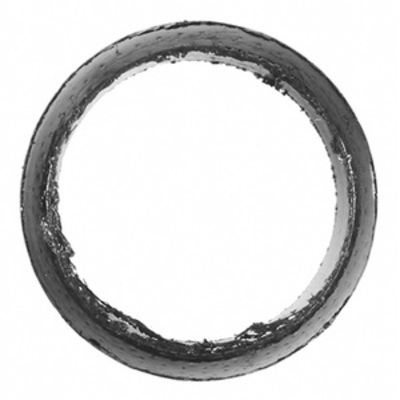 Exhaust Pipe Packing Ring