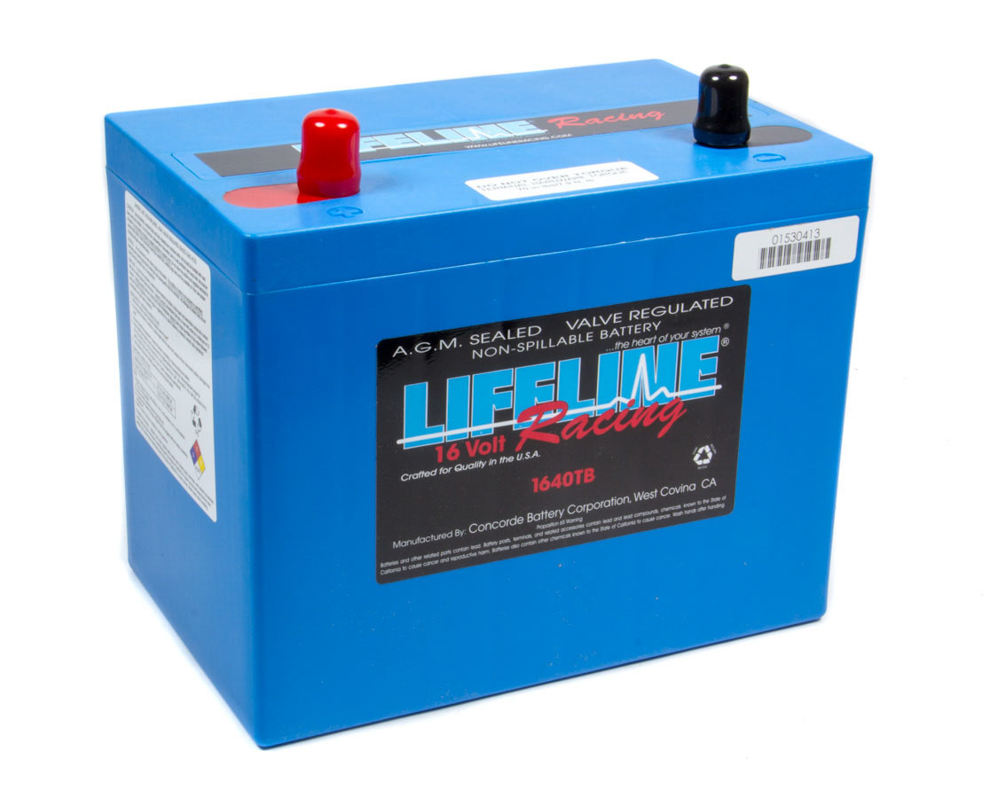 16 Volt 2 Post Battery